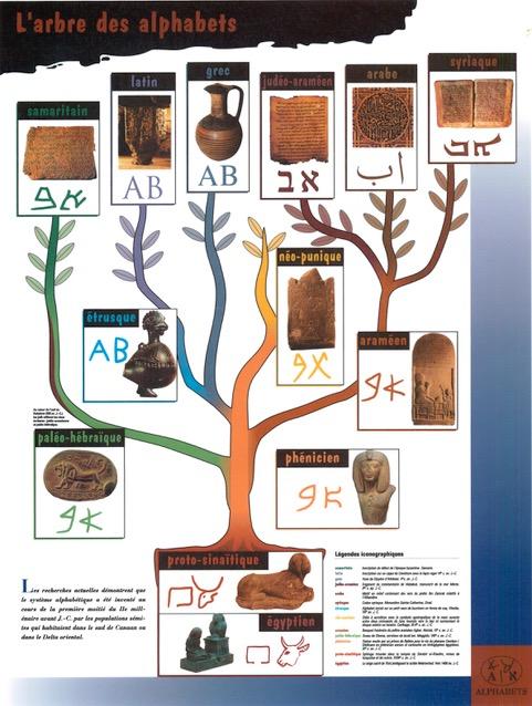 6 arbre alphabets